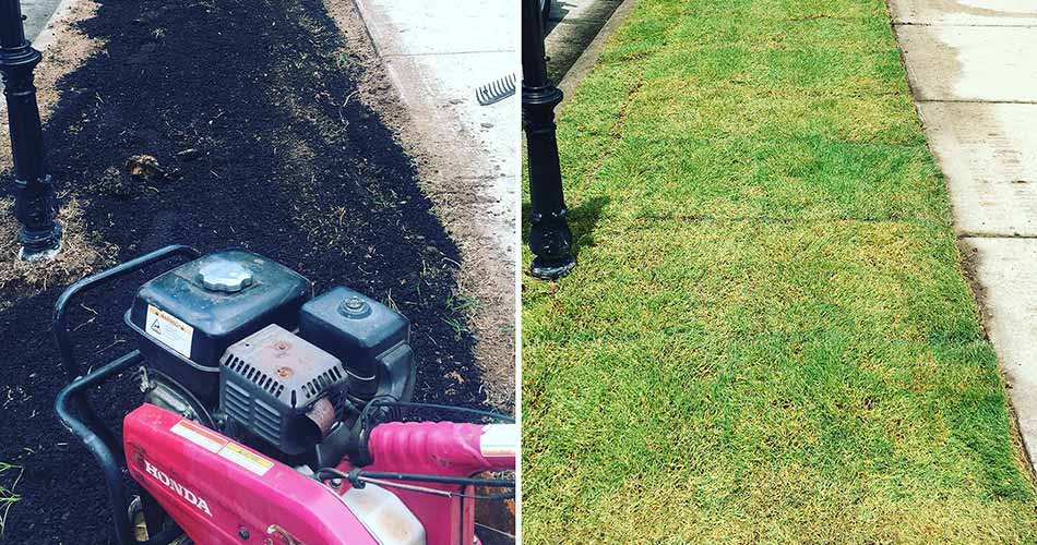 Before and after photo depicting a sod installation project for a property in Cary.