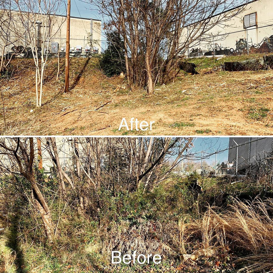 Before and after brush cutting service at %%targetarae1%%, NC commercial property.