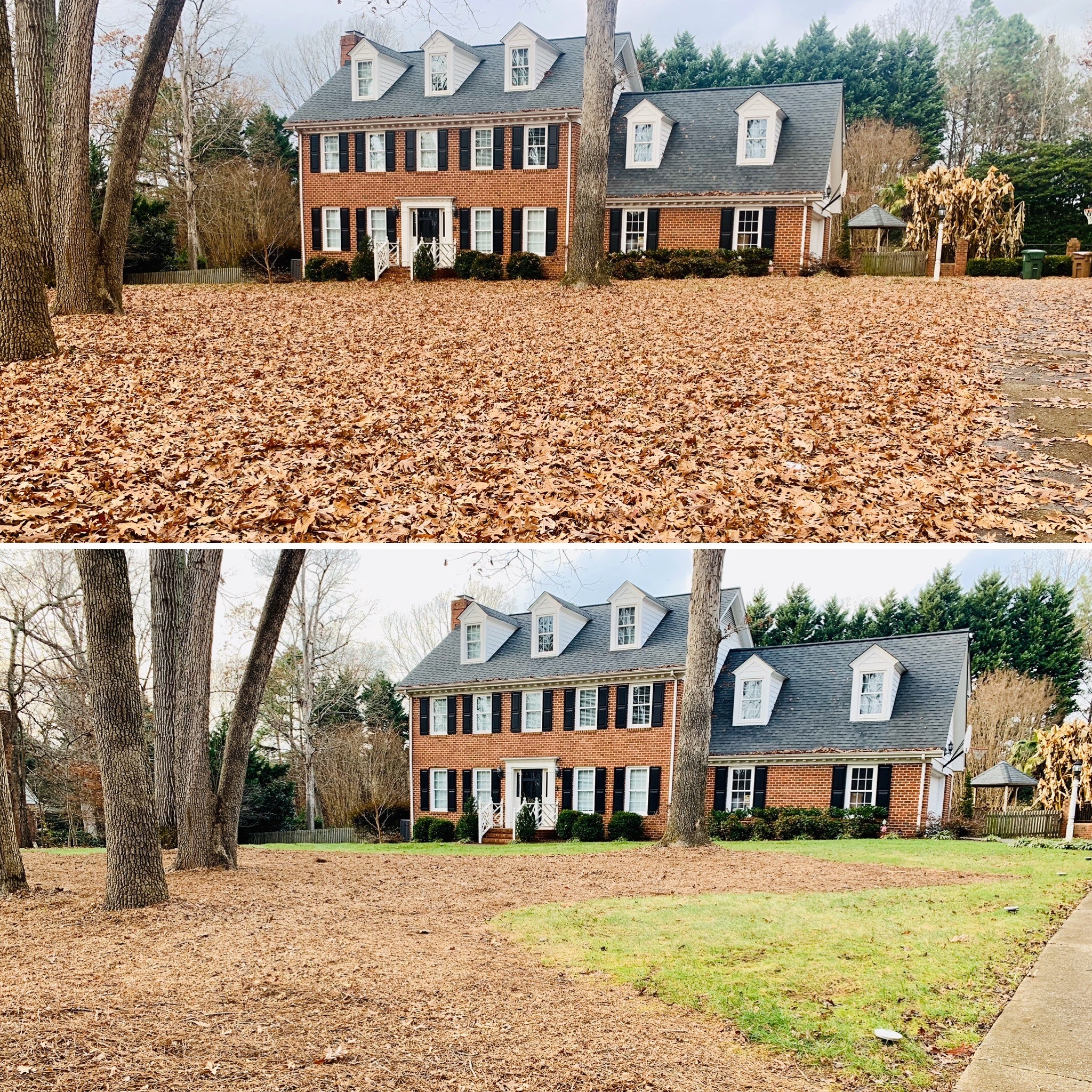 Backyard at a home in  Morrisville, NC after fall clean up service.