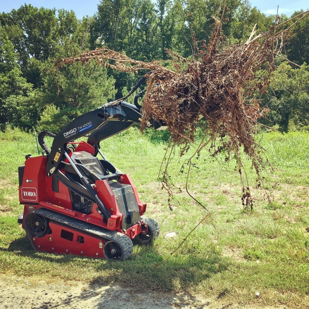 /files/shrub-removal.jpg